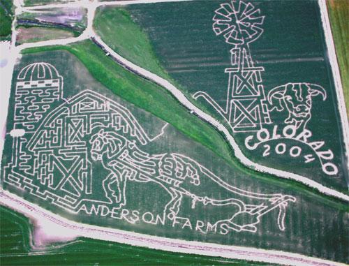 2004 Corn Maze