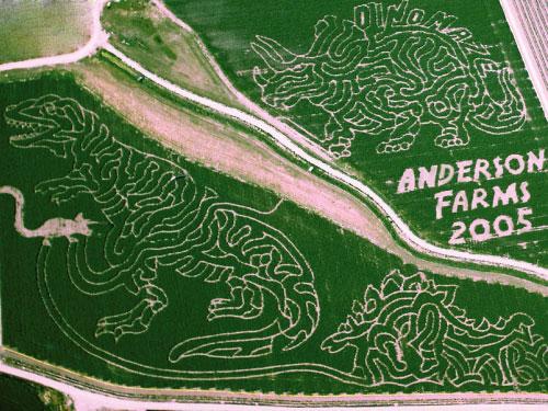 2005 Corn Maze