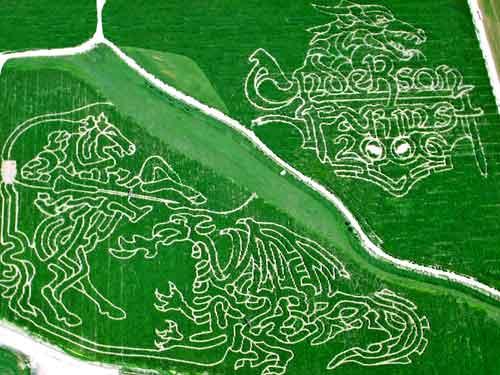 2006 Corn Maze
