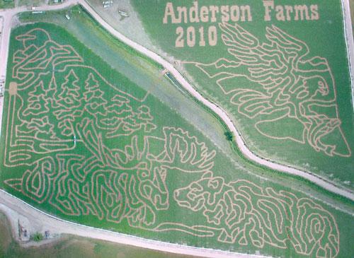 2010 Corn Maze
