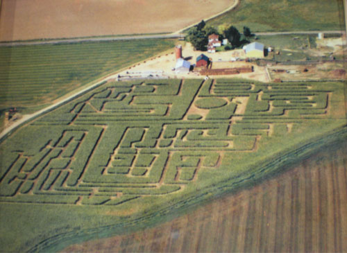 1999 Corn Maze