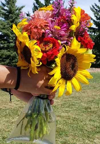 bag of sunflowers